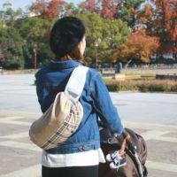 【L】【レイヤー】ベージュ×ブリティッシュ風チェック/抱っこひも収納カバー「ルカコ」88-1006-11